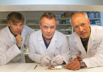 Three researchers and a fish.