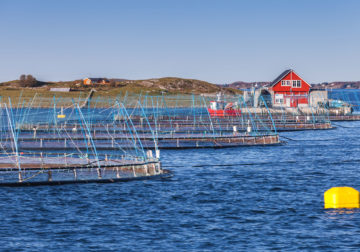Norwegian fish farm.
