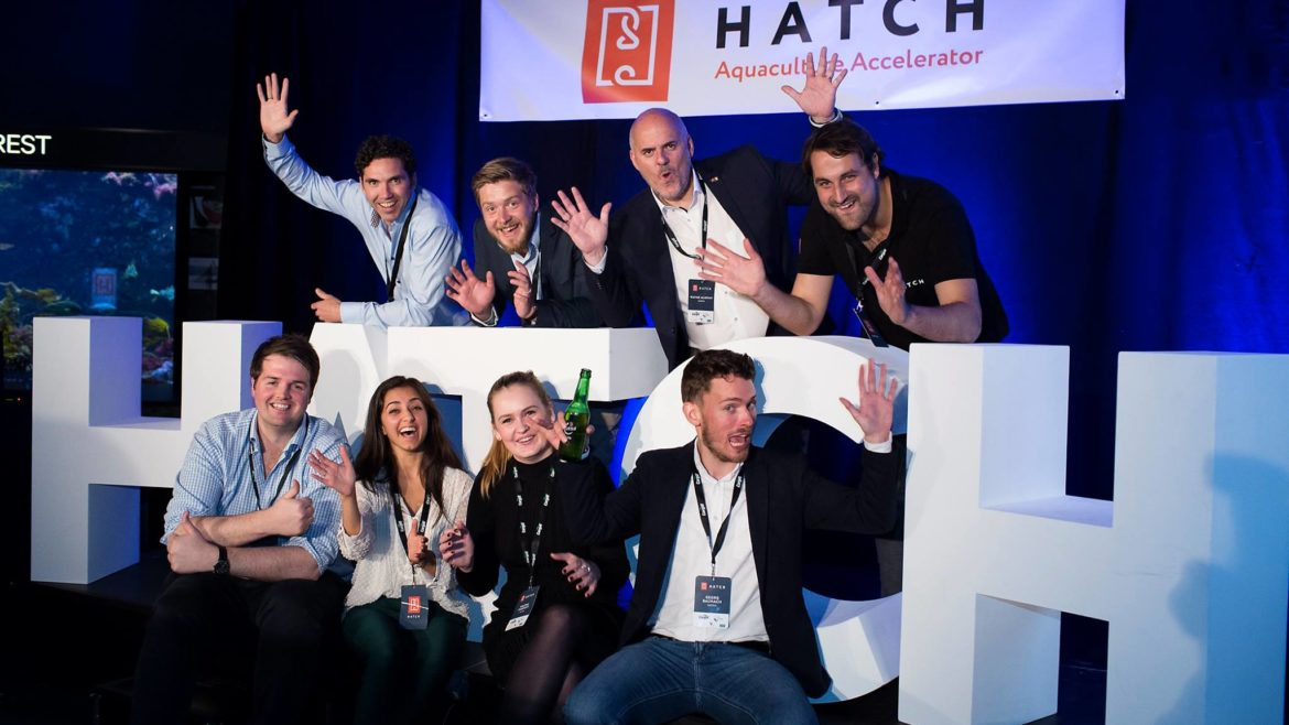Hatch team together with partners.